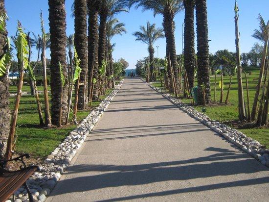 IC Hotels Green Palace : way to sea