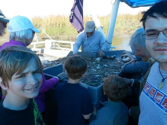 Credle's Adventures: Lots of sea/marsh critters!
