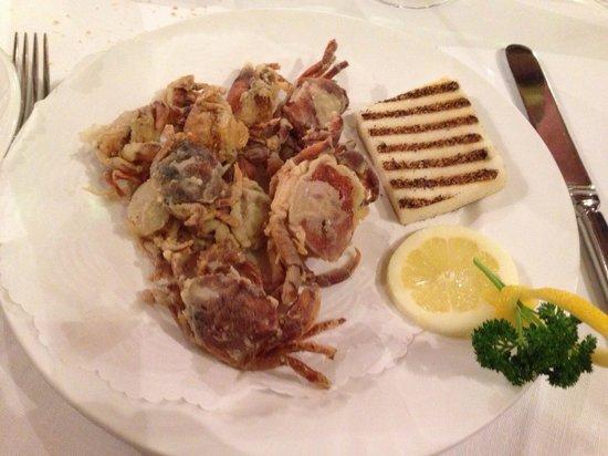 Fiaschetteria Toscana : Fritto di moeche