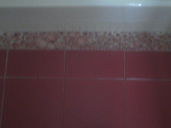 Hotel Residence Quintinie: decorative tiles around shower