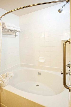 Hilton Garden Inn Atlanta NW/Wildwood: Standard Garden Tub