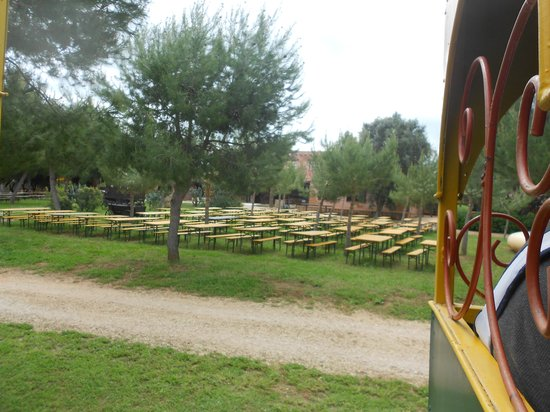 Carrisiland Resort : area pic-nic