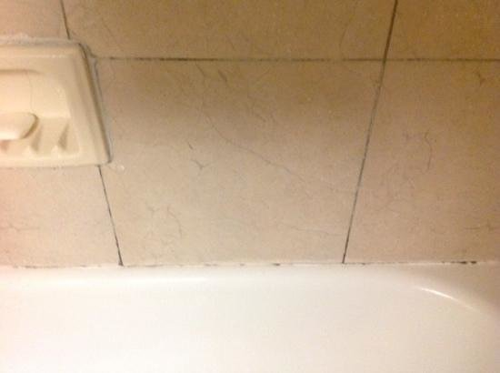 Crowne Plaza Hotel Astor-New Orleans: they didnt take care of the bathroom problems such as mold and faucet falling apart.