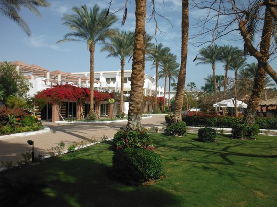 Iberotel Palace: Garden area between beach and hotel