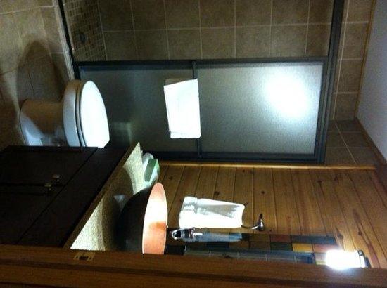 Shenandoah Crossing: The bathroom