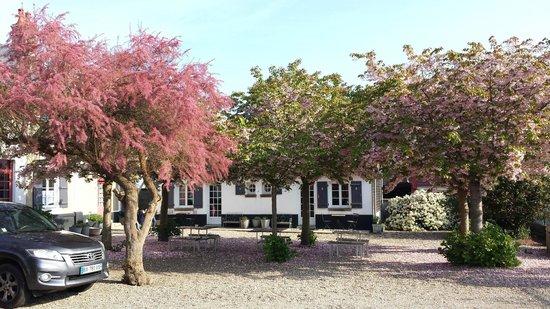 Le Presbytere: La cour fleurie