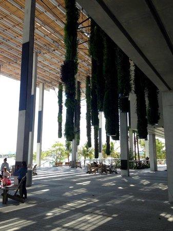 Perez Art Museum Miami: The