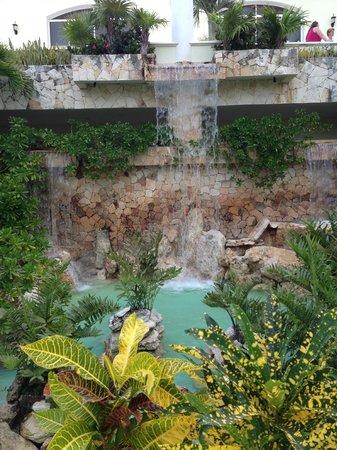 El Dorado Casitas Royale, by Karisma: Amazing landscaping