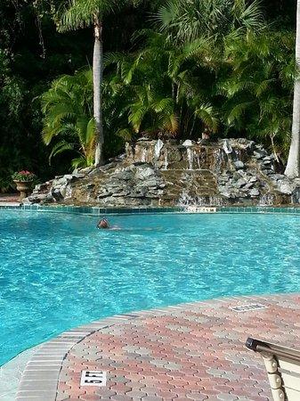 Parkway International Resort : Beautiful pool!