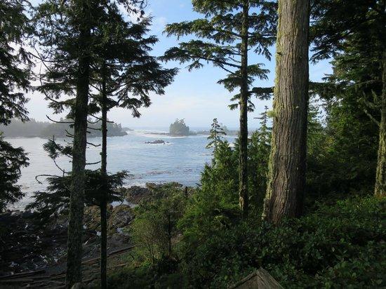 A Snug Harbour Inn: View from the Inn