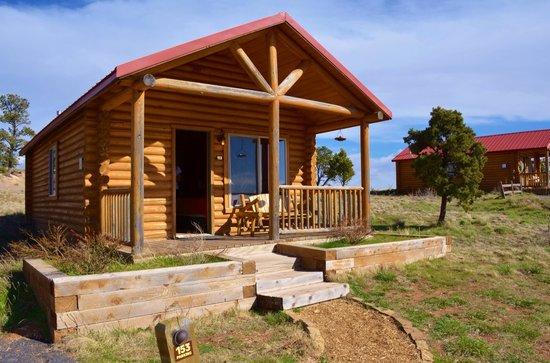 Zion Mountain Ranch : Buffalo Vista 2 Kings cabin #153