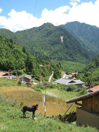 Zhuo Ma's Jiuzhaigou Home Stay: View from hike around village