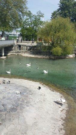 Genfer See: Lake