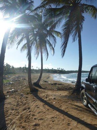 Excellence Punta Cana: Bike Tour Destination