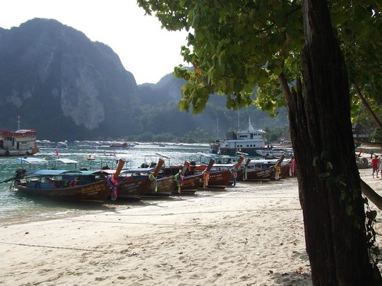 Phi Phi Villa Resort : The longboats anchored near the ferry terminal