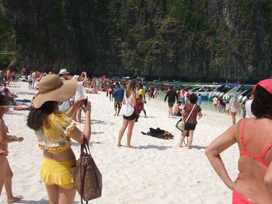 Phi Phi Villa Resort : Maya Beach day trip