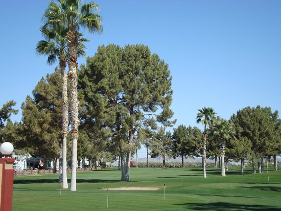 Westwind RV & Golf Resort: Gold course is nicely maintained.  Short par 3 but fun.