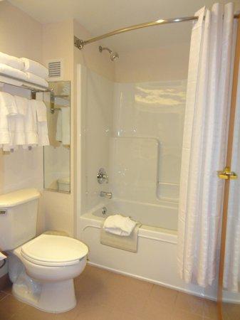 Comfort Inn & Suites: Bath room