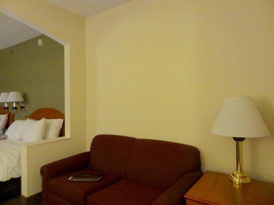 Comfort Inn & Suites : Spacious room