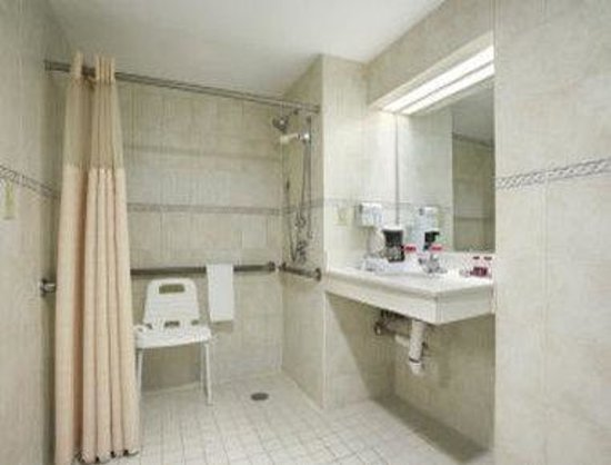 Ramada Plaza Newark Liberty International Airport: Bathroom