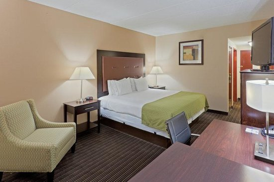 Holiday Inn Express Charleston / Southridge: King Bed Guest Room