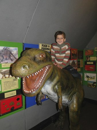 The Dinosaur Museum : specially up stairs where they could climb on!
