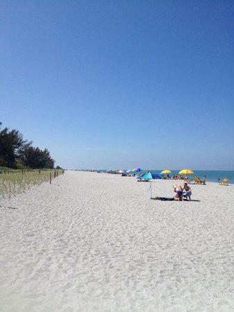 Captiva Beach: Strand