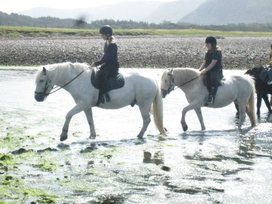 Shieling Holidays: Horse riding in mull