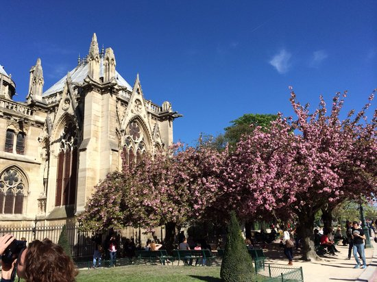 British Tours - Day Tours from London: Paris on a sunny April day