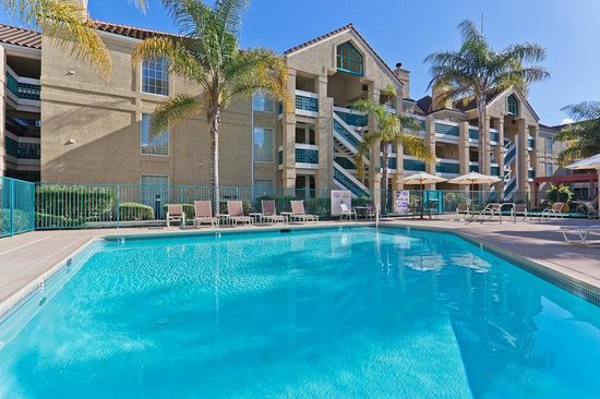 Swimming Pool Picture Of Staybridge Suites Sunnyvale Sunnyvale Tripadvisor
