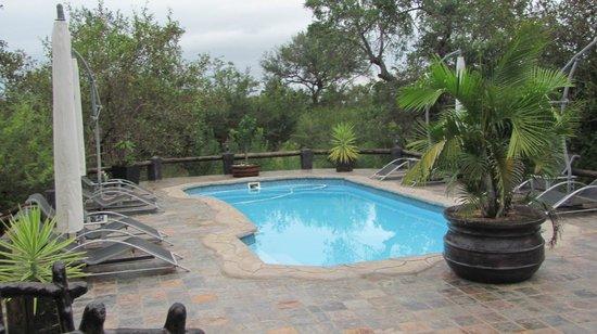 African Rock Lodge: Pool