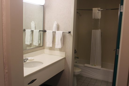Federal City Inn & Suites: Bathroom Sink