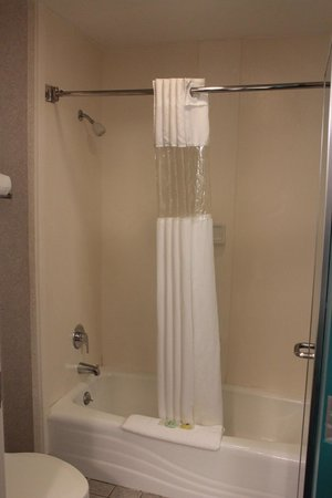 Federal City Inn & Suites: Bathroom Shower/Tub/Toilet