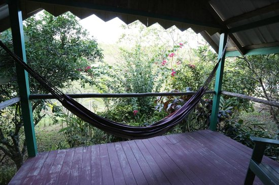 Cool M Farm: Hammock on the back porch