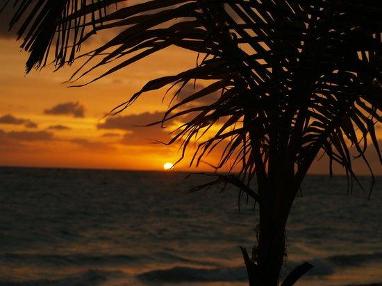 Hotel Riu Palace Punta Cana : Sunrise