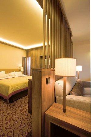 Wald & Schlosshotel Friedrichsruhe: Superior Double Room