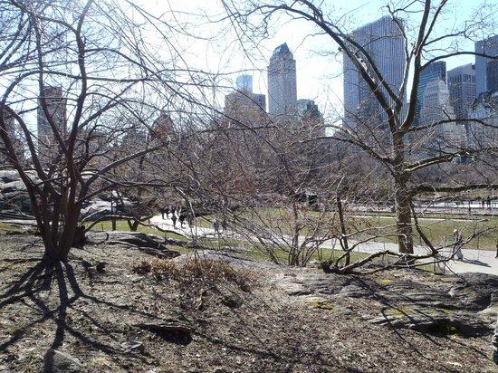 Real New York Tours: Paseo por Central Park con Greg