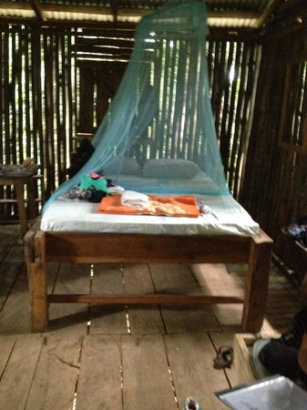 Rosalie Forest Eco Lodge: This was the most expensive and nicest possible accommodation
