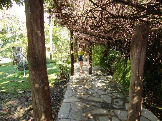 Hotel Parque das Primaveras: Estrada da natureza