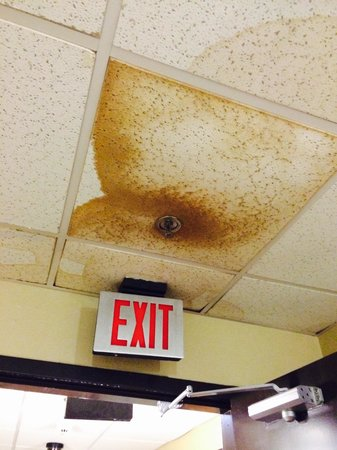 Country Inn & Suites By Carlson, Nashville Airport: Mold!!