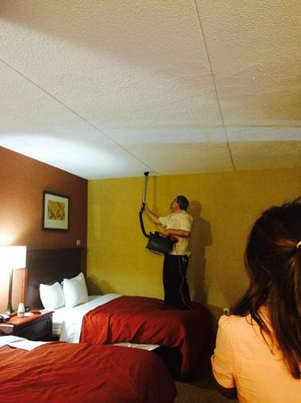 Country Inn & Suites By Carlson, Nashville Airport: Disgusting trying to kill the bugs!!