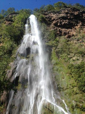 Boca da Onça Falls: Cachoeira na trilha
