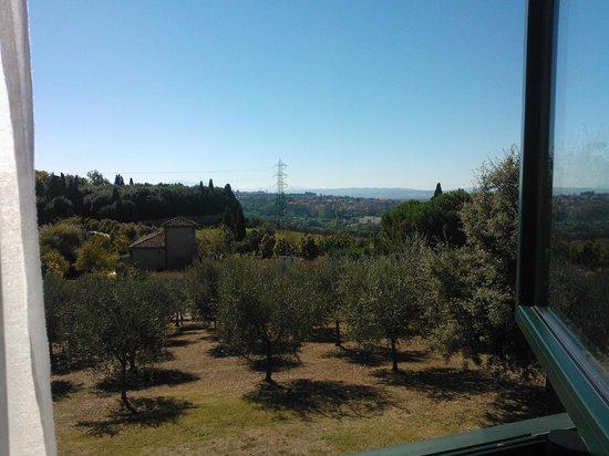 Sangallo Park Hotel : Vista del entorno