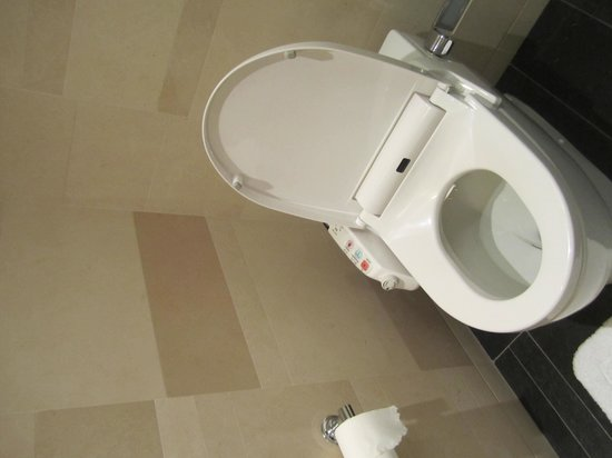 Four Seasons Hotel Tokyo at Marunouchi : Heated toilet seat - 'nuff said