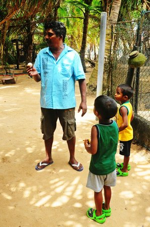 Bentota, Sri Lanka: Learning about how turtle eggs are bought and hatched