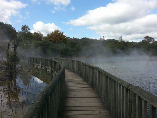 Kuirau Park: Hermosa actividad