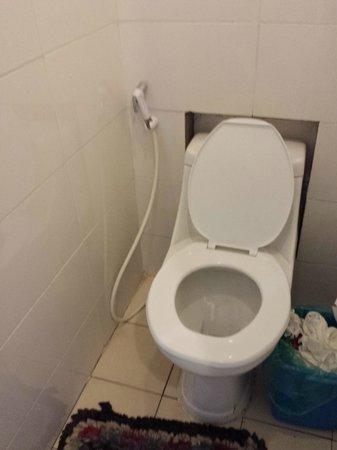 Dream Home Hostel 2: Toilet