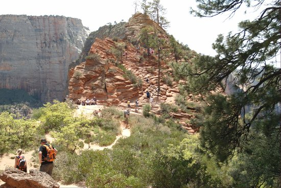 Angel's Landing: At the lookout before the final climb.
