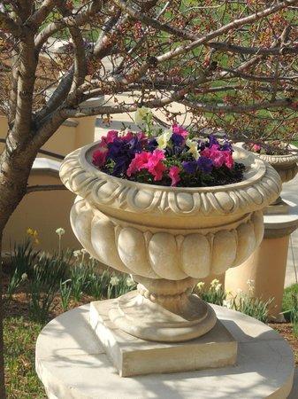 Omni Shoreham Hotel: Jardin