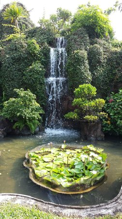 Hoi An Beach Resort : gardens in resort